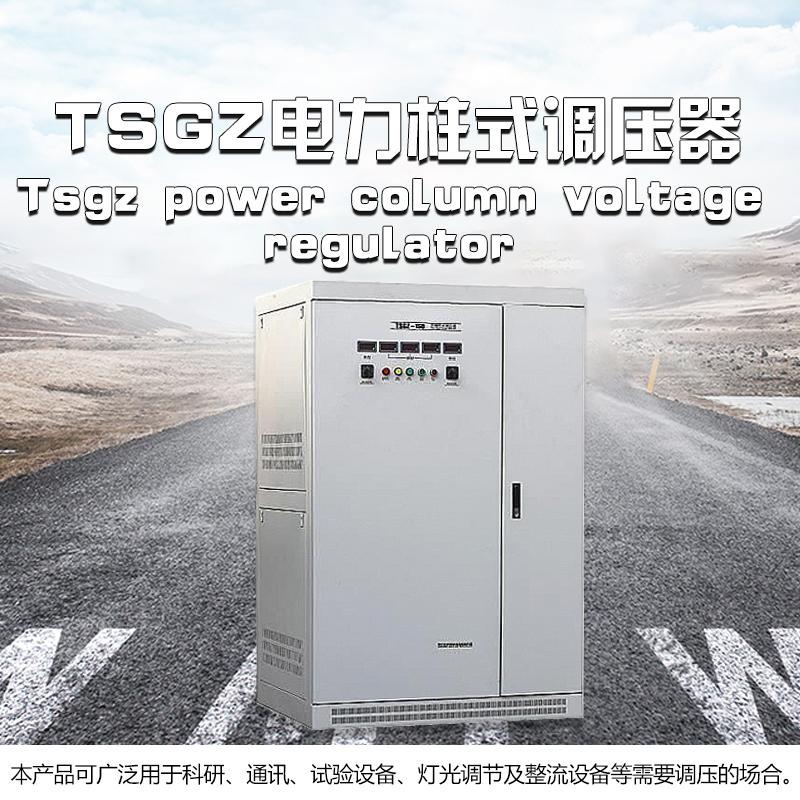 TSGZ电力柱式调压器